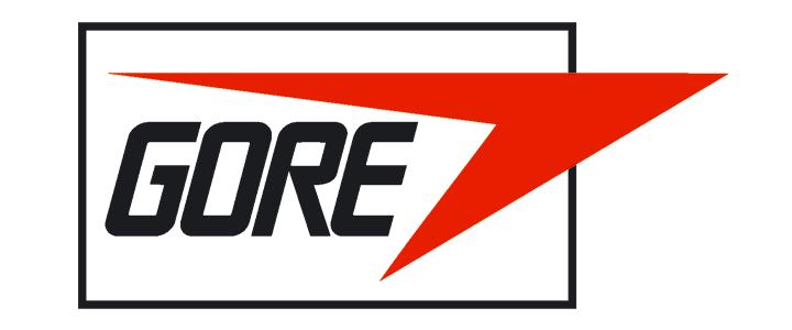 logo_wlgore.png