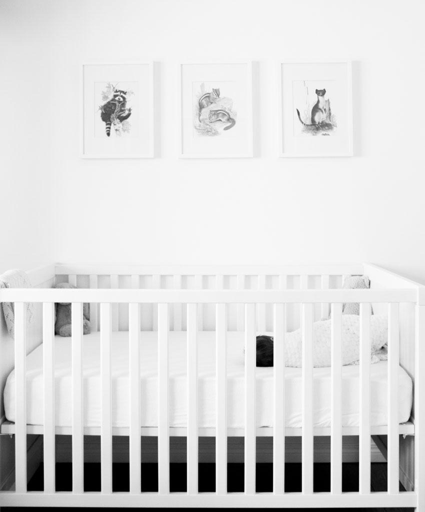 20150411 Baby Oliver LJ 0263(B&W).jpg
