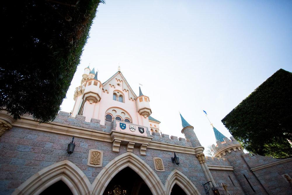 20180201 Disneyland 2018 0333.jpg