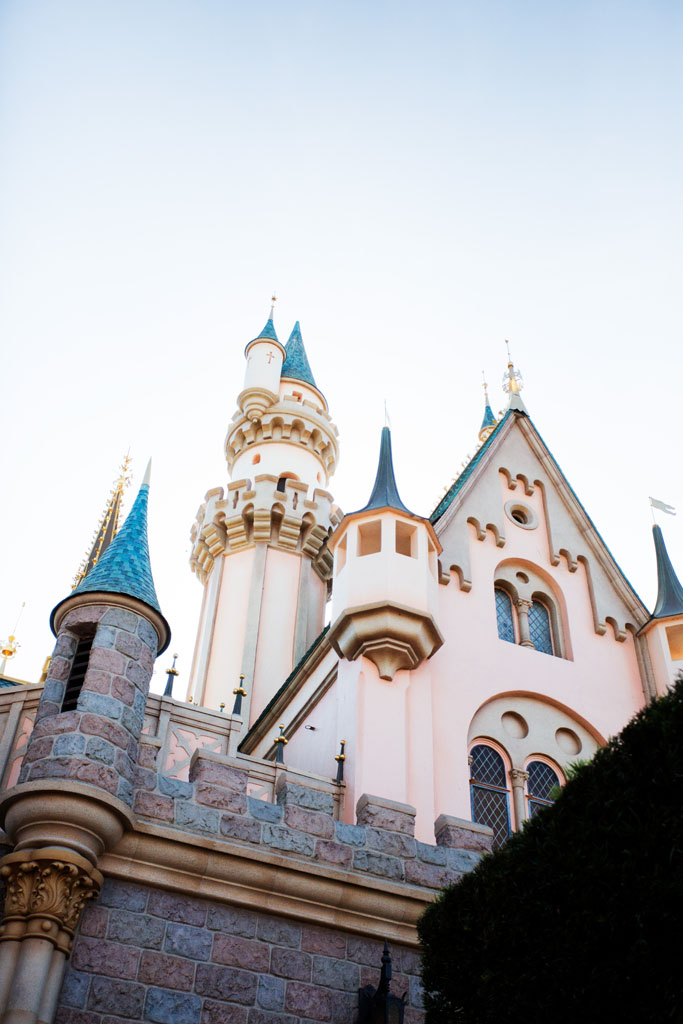 20180201 Disneyland 2018 0344.jpg