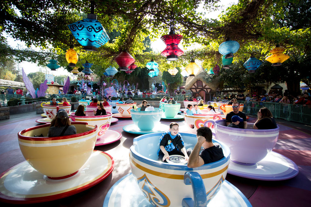 20180201 Disneyland 2018 0484.jpg