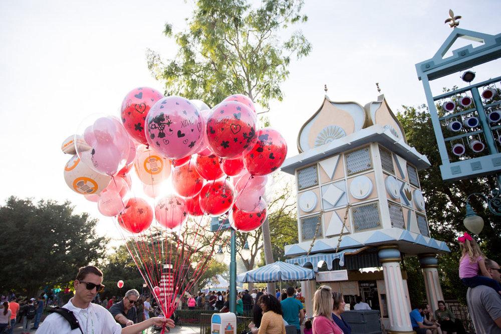 20180201 Disneyland 2018 0599.jpg