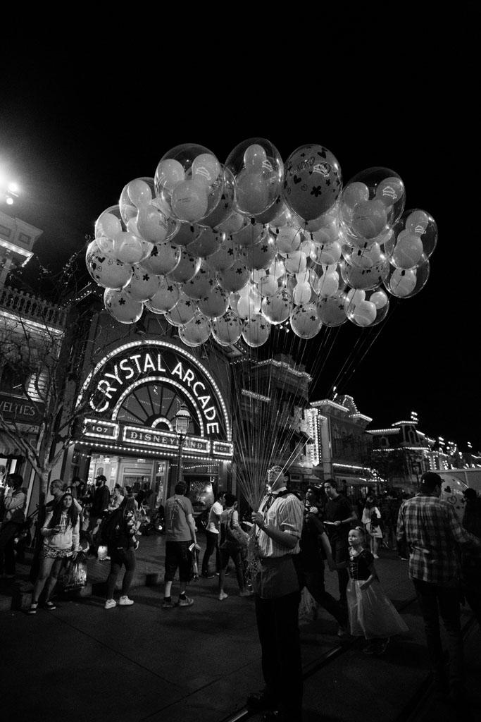 20180201 Disneyland 2018 0859(B&W).jpg
