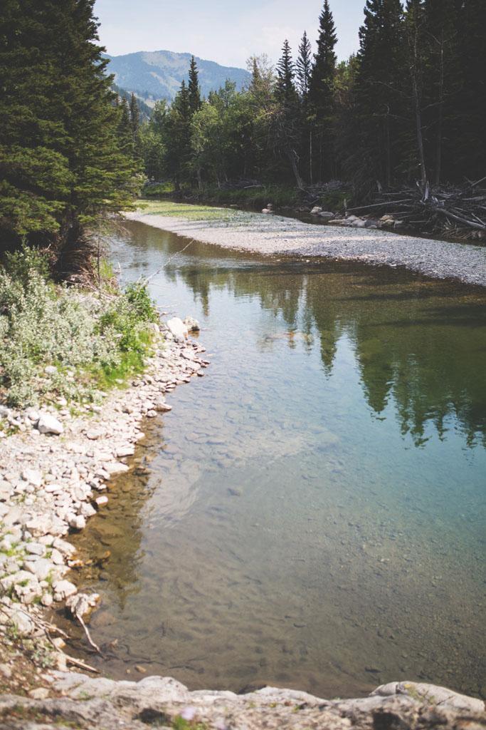20180812 Cataract Creek 0048.jpg