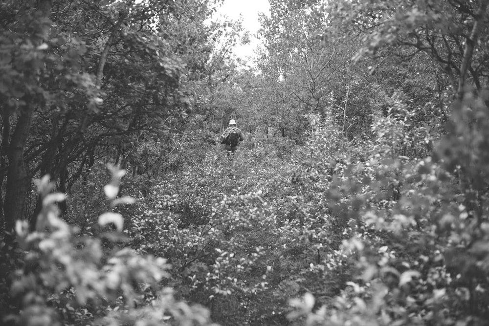 20180812 Cataract Creek 0248(B&W).jpg