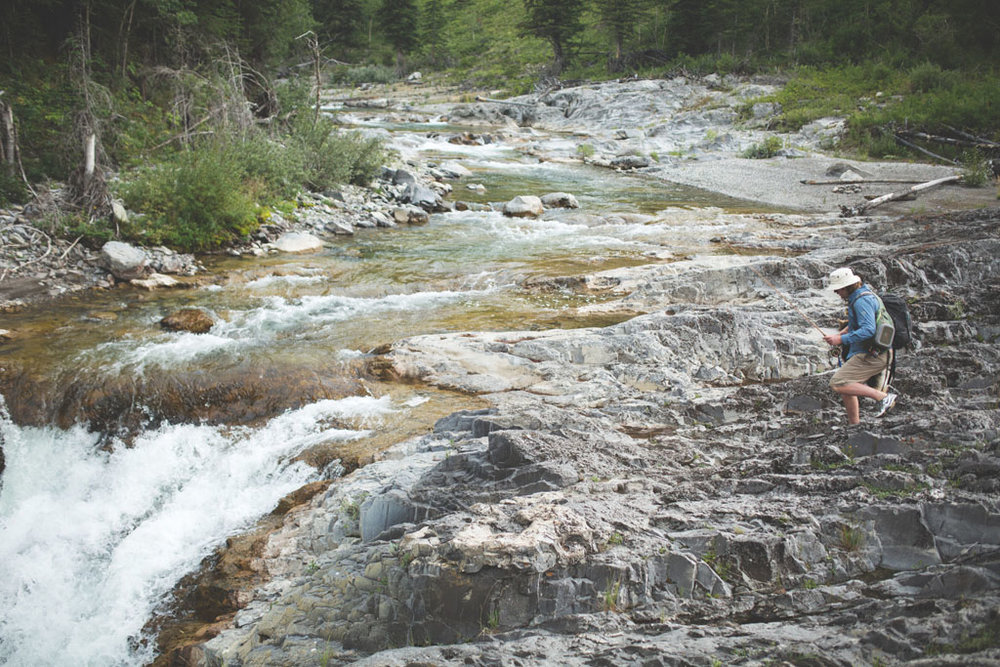 20180812 Cataract Creek 0630.jpg