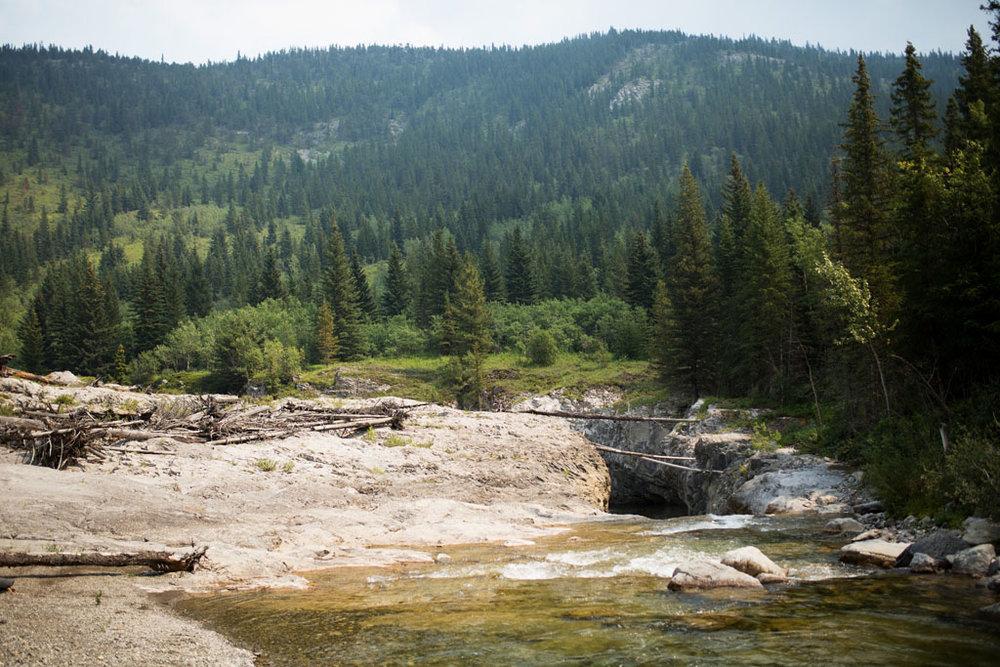 20180812 Cataract Creek 0759.jpg