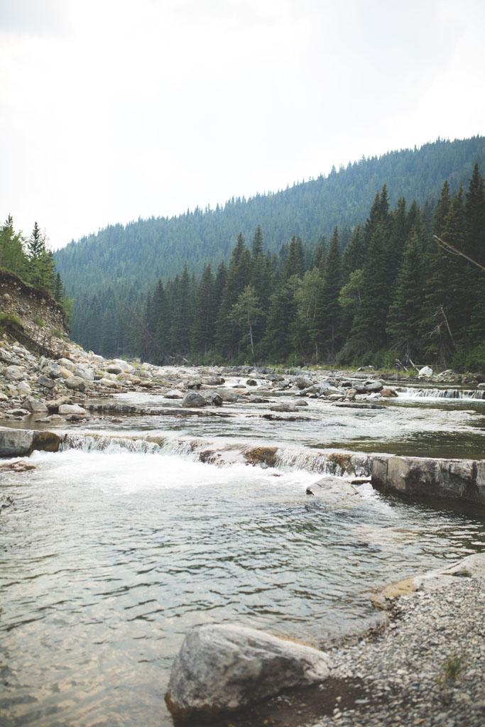 20180812 Cataract Creek 0771.jpg