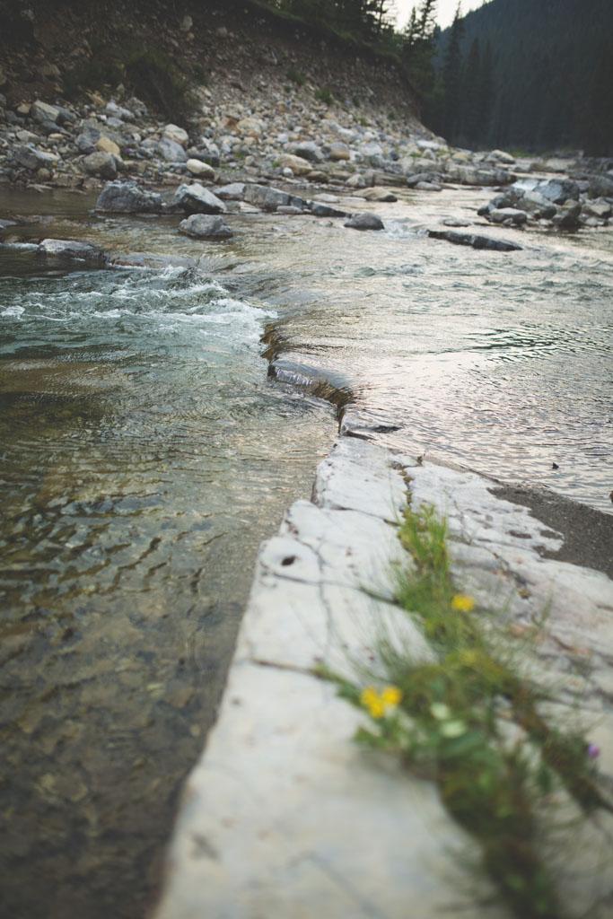 20180812 Cataract Creek 0827.jpg