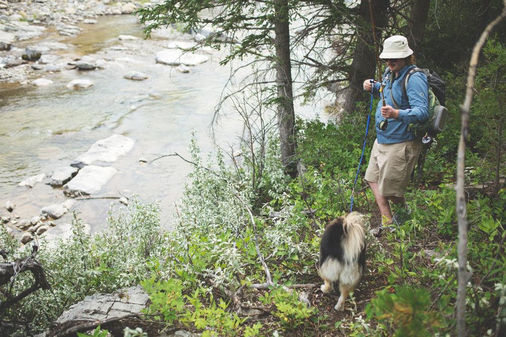 20180812 Cataract Creek 0846.jpg