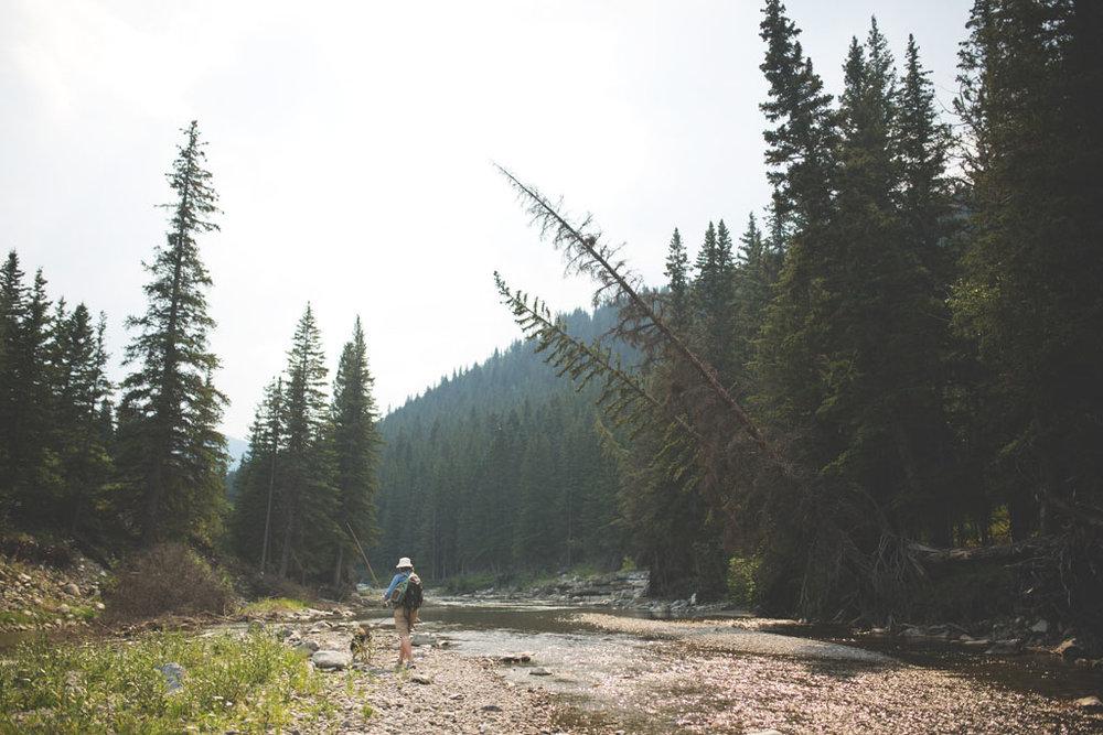20180812 Cataract Creek 0899.jpg