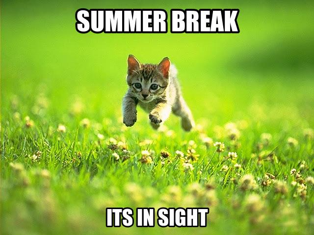 summerbreak-004.png