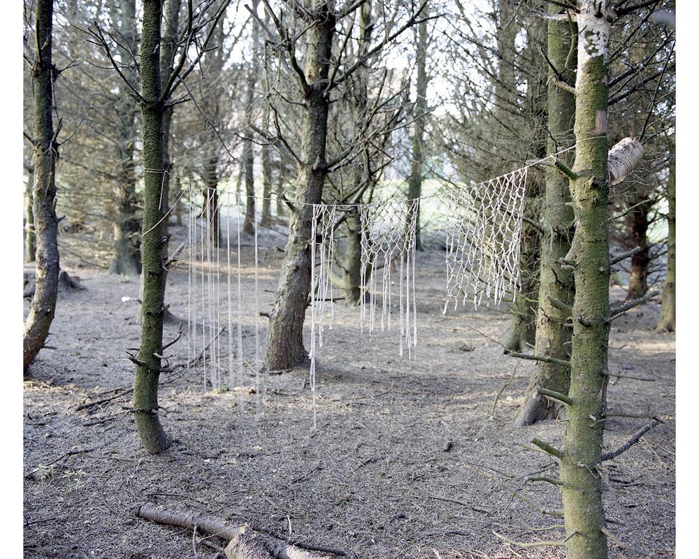 Commando Training Wood #2