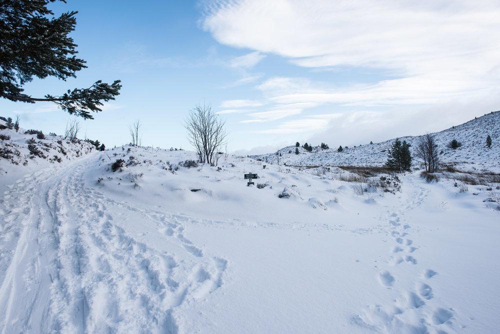 Nicholas White, Black Dots, Ryvoan Bothy, Cairngorms, Scotland