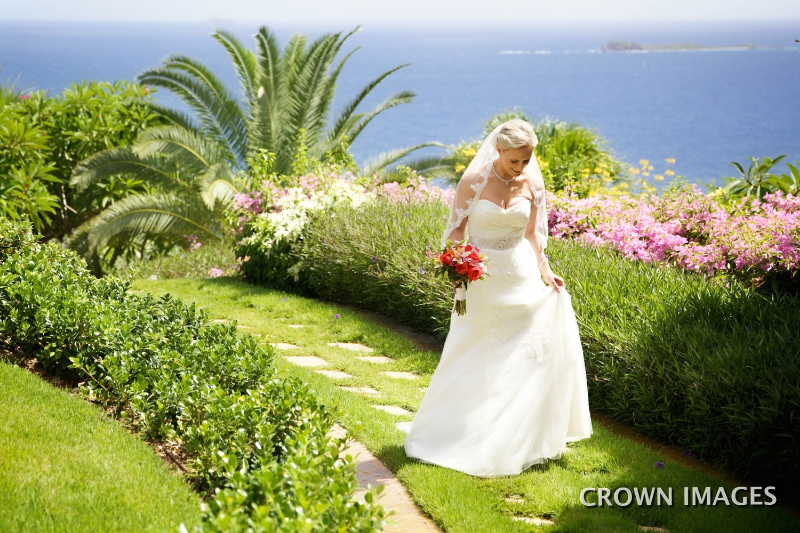 best wedding photos of 2014 virgin islands crown images