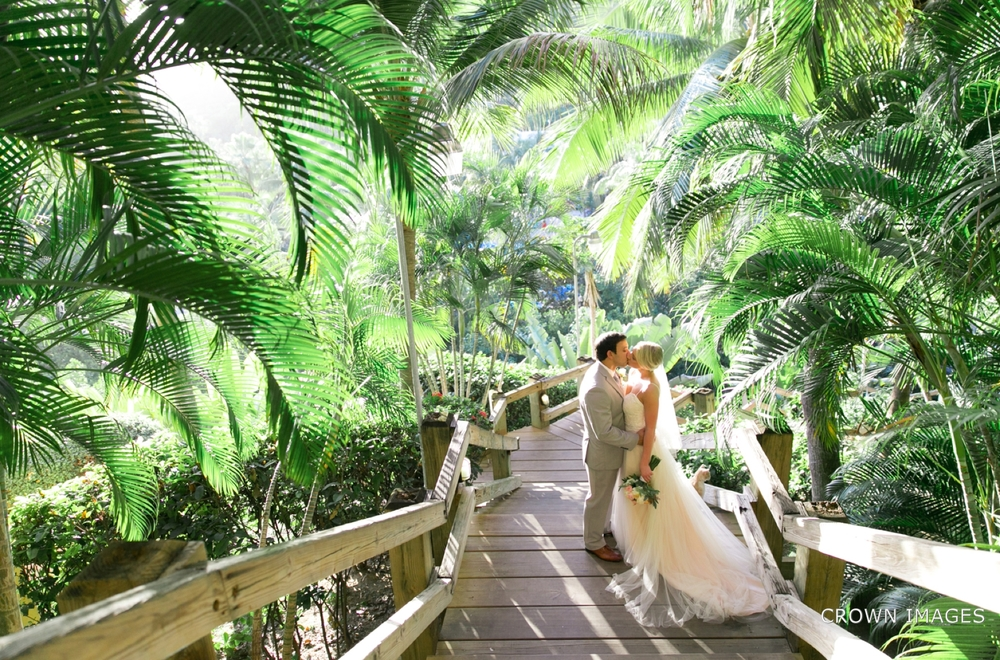virgin_islands_wedding_photographer