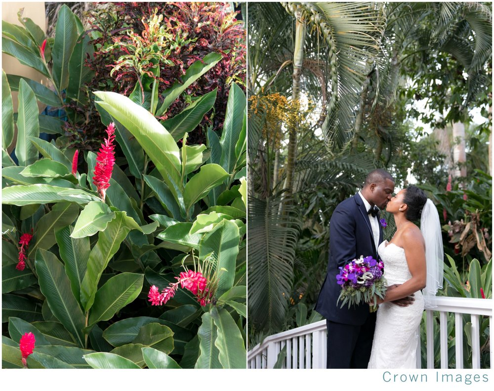 botanical-garden-wedding-photos-virgin-islands