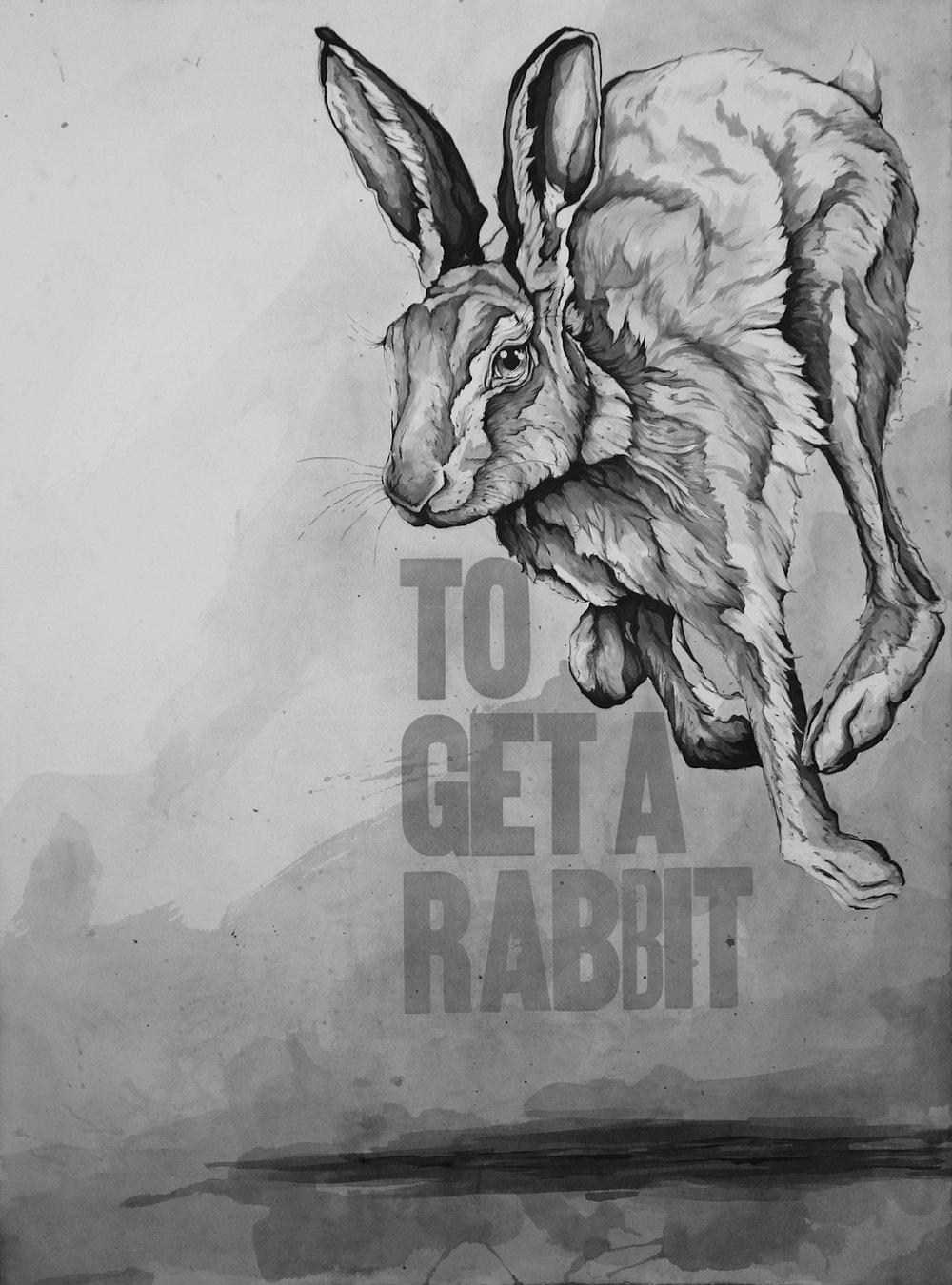3To Get a Rabbit.JPG