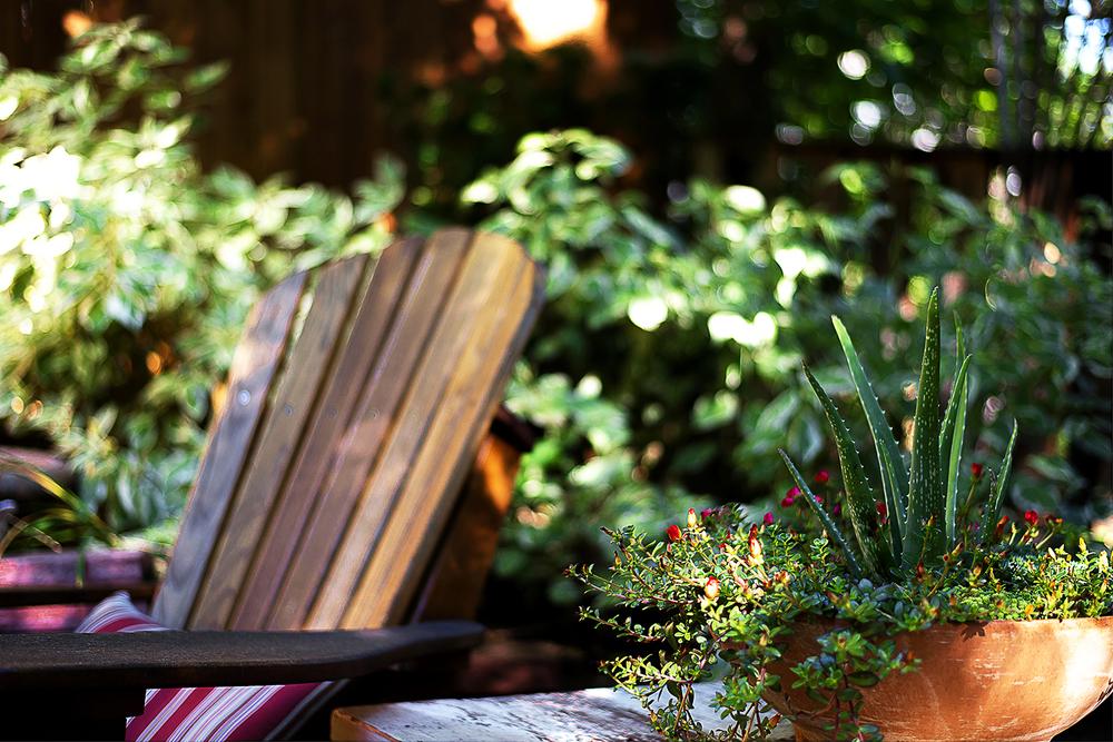 Garden Detail.jpg