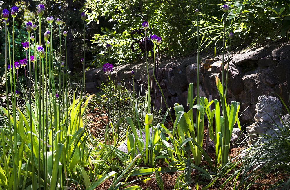 Perenial Garden Detail.jpg