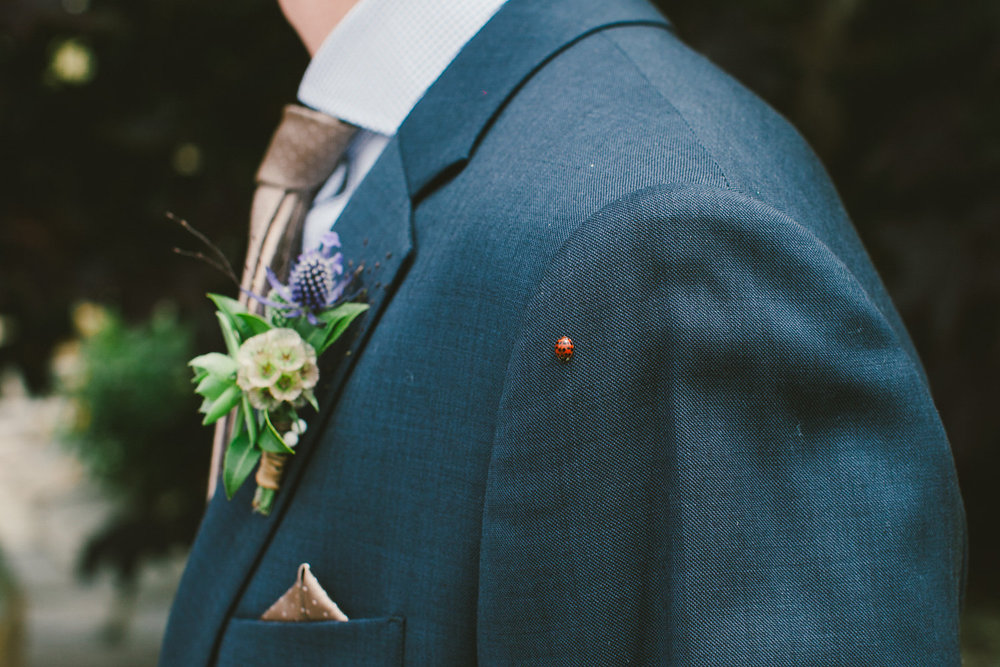 groom with ladybug