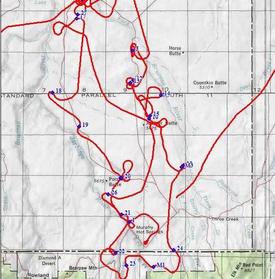 web map flight.JPG