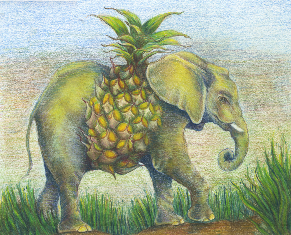 pineapple elephant