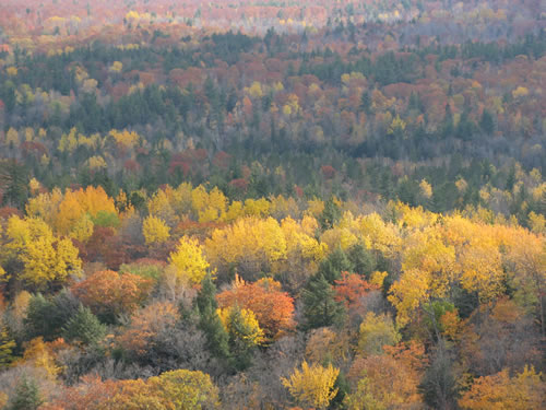 Fall-color is stupendous from up here. We missed peak color by maybe a week though.