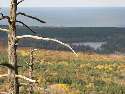 More fall-color. That's Harlow Lake in the distance, with Lake Superior just beyond.