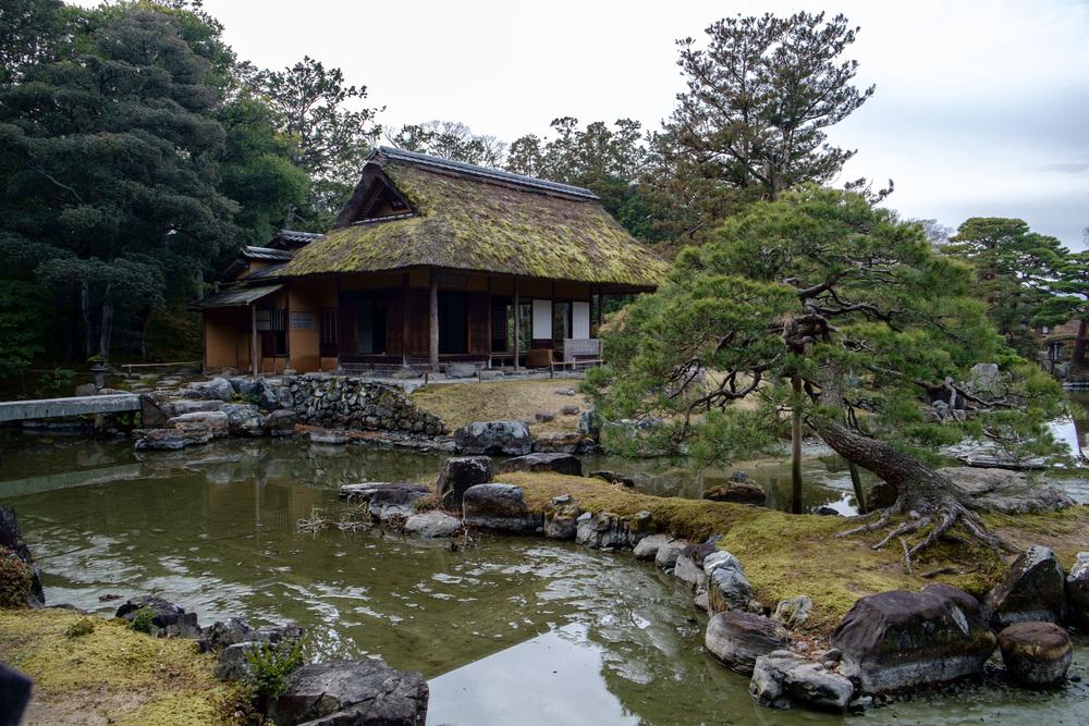 Kyoto-332.jpg