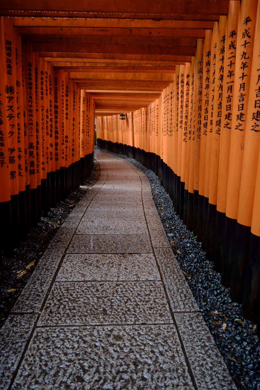 Kyoto-471.jpg