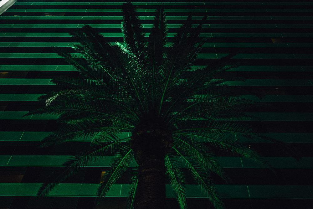 vegas night-26.jpg