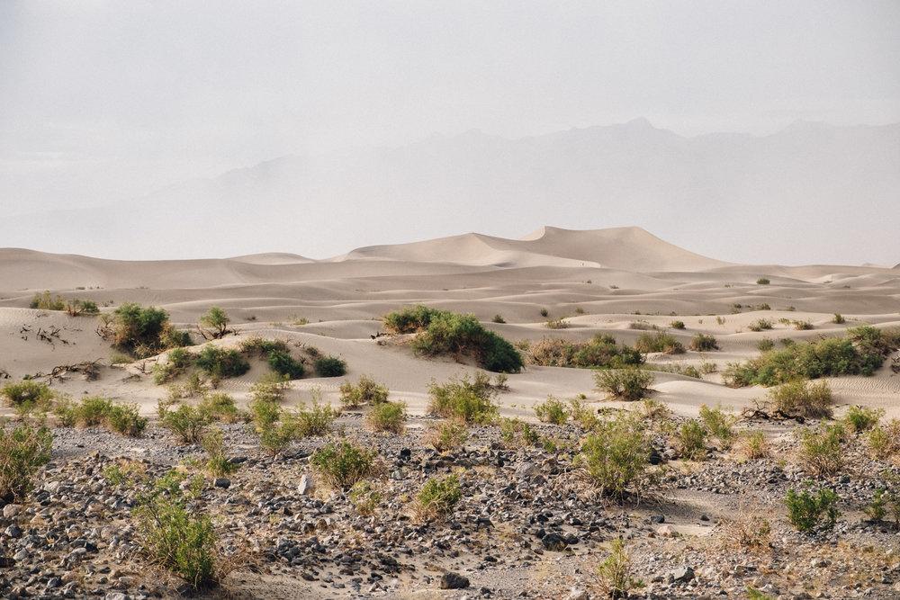 Death Valley 2-68.jpg