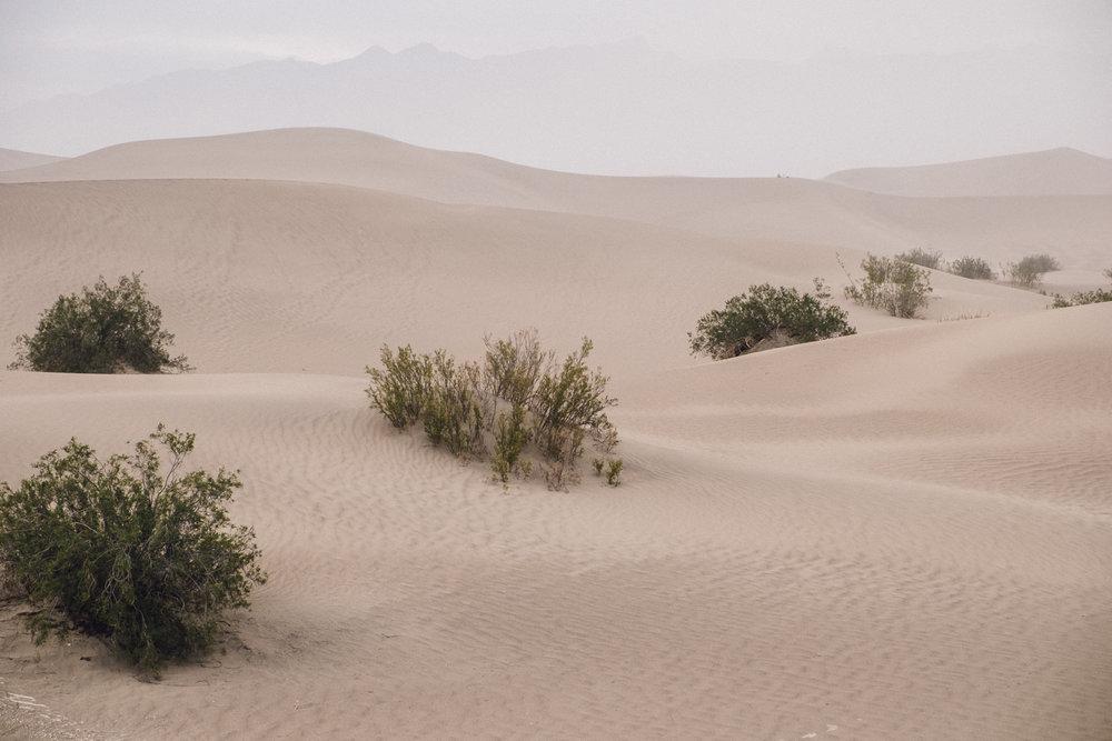 Death Valley 2-85.jpg