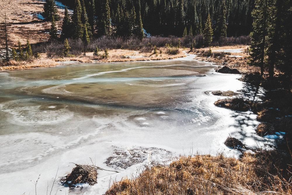 ice lake-008.jpg