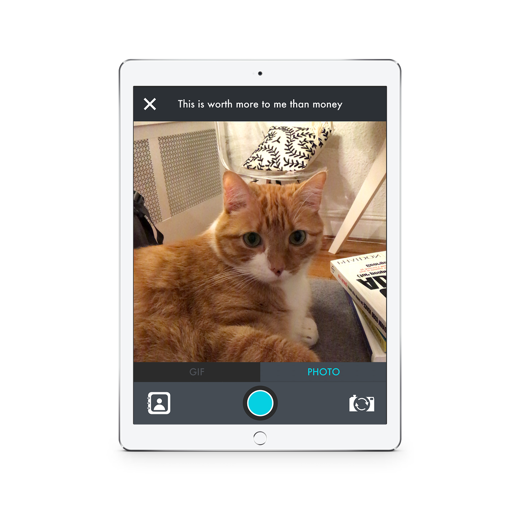 Photo/GIF Tool - This tool is intended to get kids out into the world to collect answers in fun ways. Kids can record a gif or take a photo and then decorate it with a stickers and text.