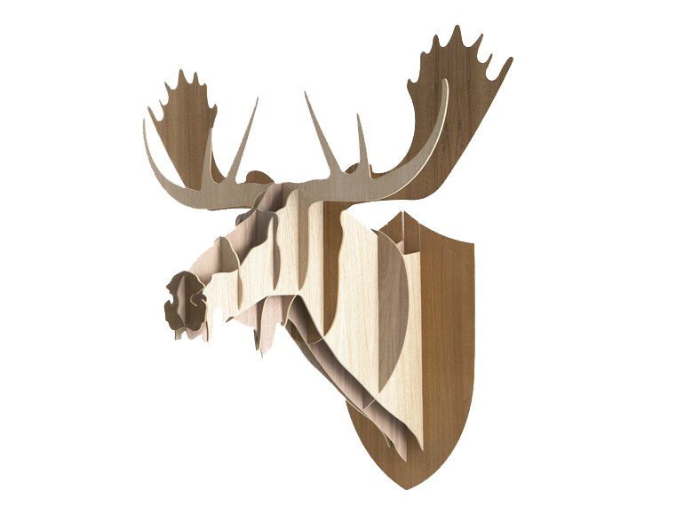 'moose.jpg
