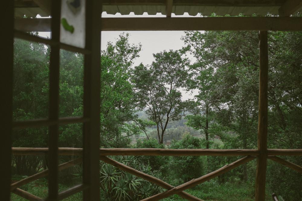 Old Pine Cabin Dylan Web-2.jpg