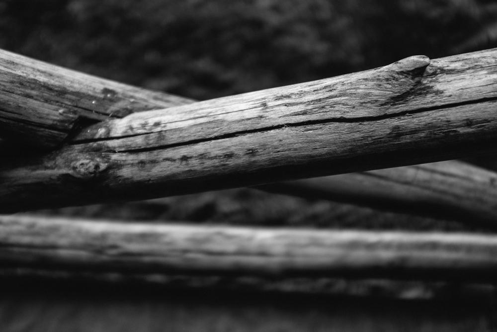 Old Pine Cabin Dylan Web-6.jpg
