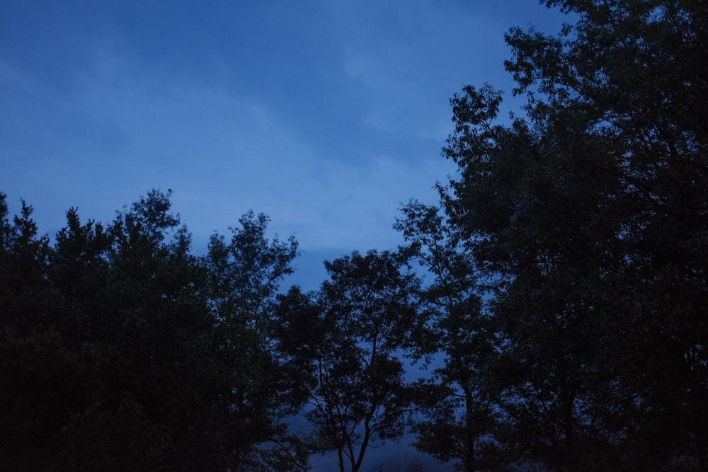 Old Pine Cabin Dylan Web-16.jpg