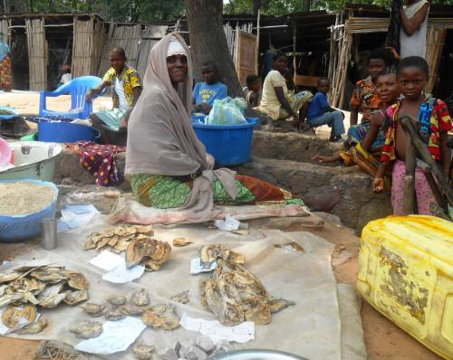 A member of the savings group sells dried fish in the market (Kananga)