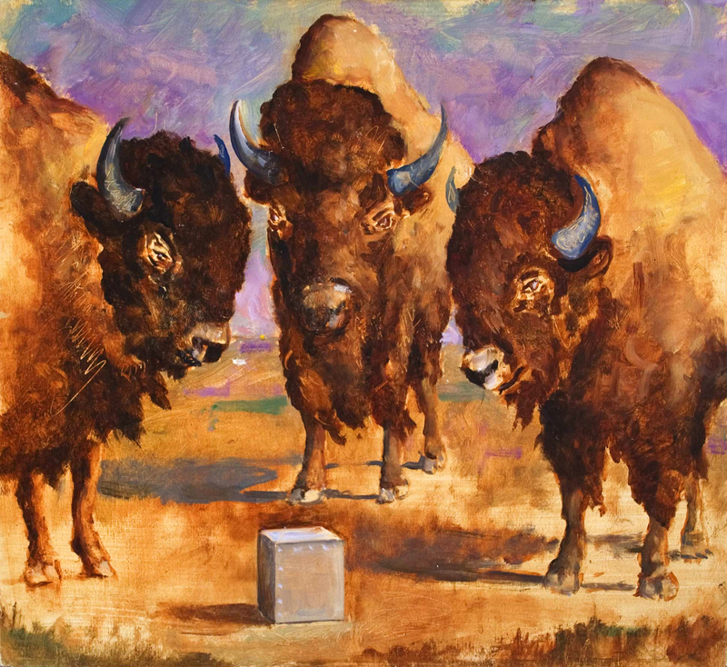 LARGE STUDY: BISON AND BOX