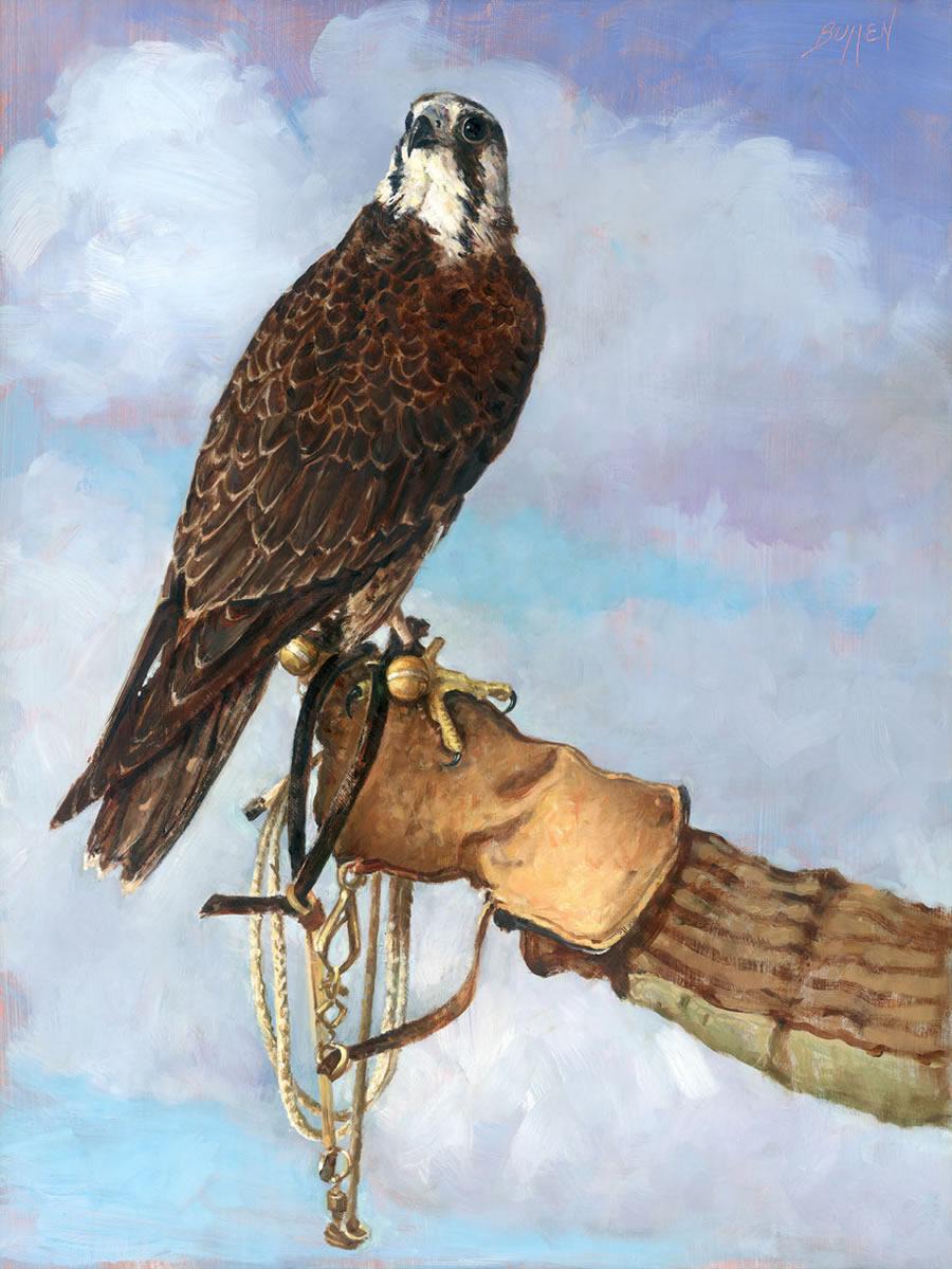 """Tundra Falcon -""""Cadabra"""""""