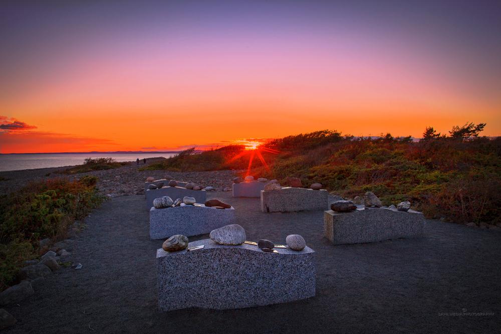 Blant rulle steinene på Mølen kan du finne minst 100 ulike bergartstyper.