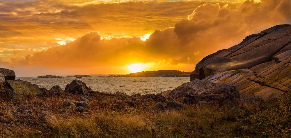 Gammel natur. Naturen langs Larvikkysten svinner snart inn i dvale. Først skal råtten vegetasjon dø og forsvinne. Solnedgang over Ølbergholmen sett fra Solbergodden.