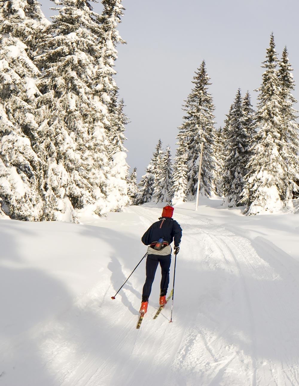 ski-5897.jpg