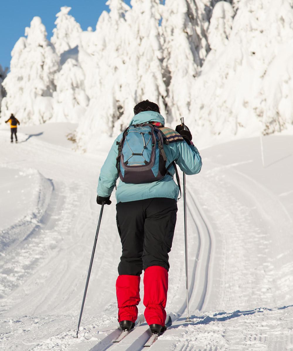 ski-39303.jpg