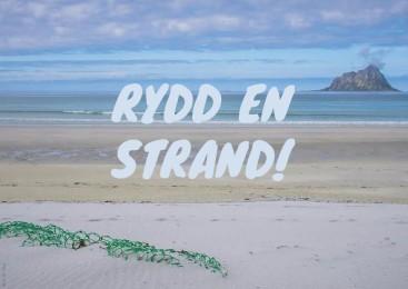 Rydd-en-strand-367x260.jpg