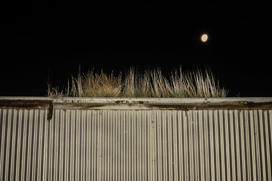 Moonlight at the shearing shed. Coongulmerang, Victoria, Australia