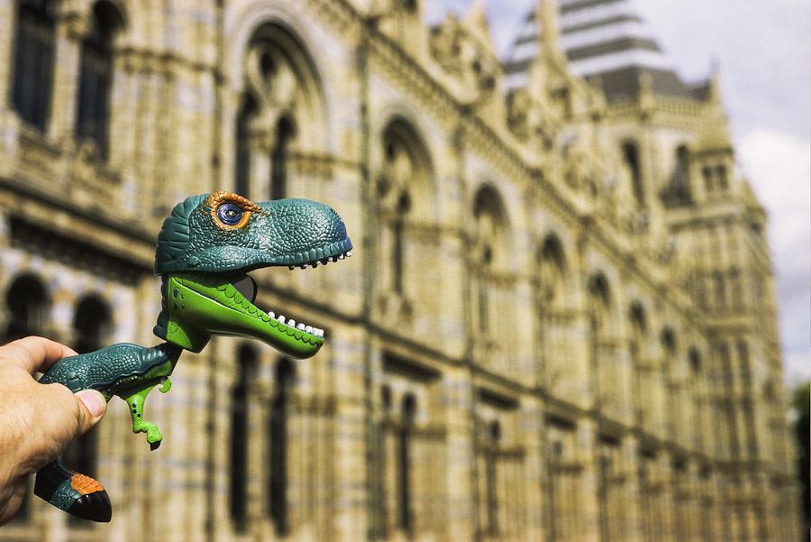Dinosaur at the Natural History Museum.